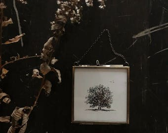 Original Framed Tree #1 Pen and Ink Drawing