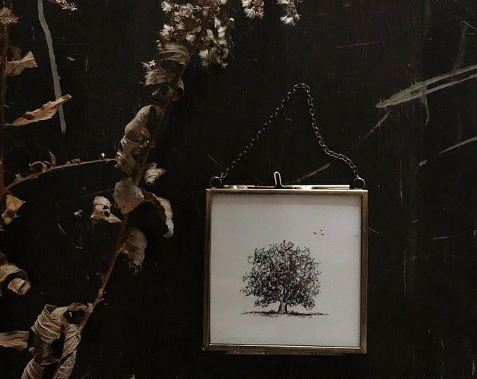 Featured listing image: Original Framed Tree #1 Pen and Ink Drawing