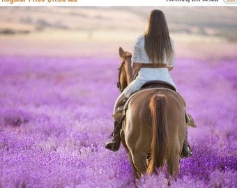 50% Off - Digital Background, Photo Overlays, Background Replacement, Photography Backgrounds & Backdrops, Lavender Fields, Purple Flowers L