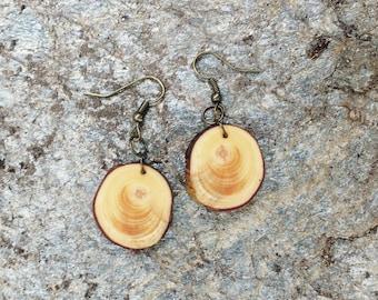 Salvaged Pine Earrings, Wood Dangle Earrings, Boho Earrings, Rustic Tree Slice Earrings