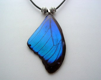 Real Butterfly Wings Rain Forest Electric Blue Morpho Menelaus Necklace F1 AS