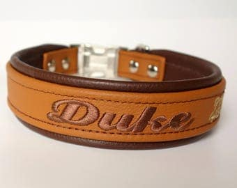 Personalized Leather Dog Collar Padded Lining One and Half Inch (1.5 inch) Wide Tapered Down To One Inch Side Release for Large Breed