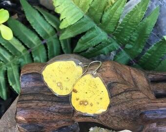 Orange Sulfur Butterfly Earrings, Small Butterfly Wings, insect jewelry, natural, organic jewelry, Cruelty Free, Bohemian, Boho Gypsy, BW030