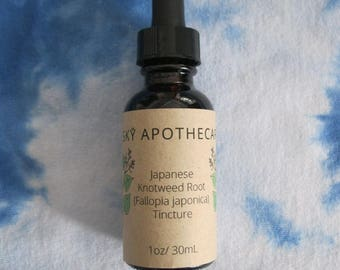 Wildcrafted Japanese Knotweed Root (Fallopia japonica) tincture