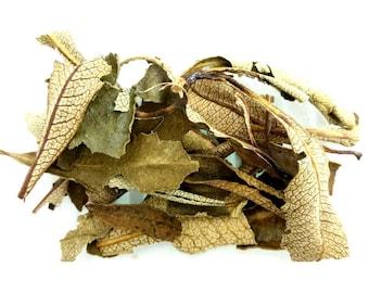 Yerba Santa (Mountain Balm) Dried Herb 20gm