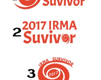 i survived Irma Hurricane Inspired Vinyl Decal Sticker