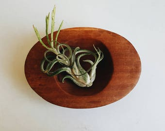 Hand Carved Wooden Bowl - Modern Farmhouse Accessory - Wood Catch All Bowl - Minimalist