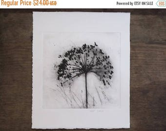 Flower in the wind Large Original Etching, Dandelion or Dried Wildflower umbellifer,Black and white botanical art