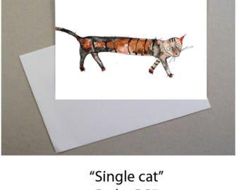 A long cat walk