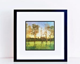 landscape weaving eucalyptus trees on river bank - australian photography, woven landscape, water, contemporary artwork - green and gold