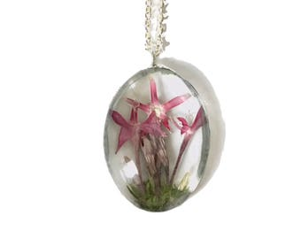 Real Pressed Flower Pink Fairy Necklace Preserved in Oval Bubble Glass