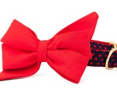 Crew LaLa ™ Scarlet on Lil' Hearts Belle Bow Dog Collar