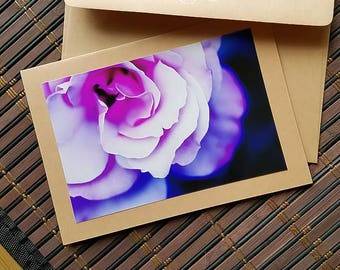 Blank photo card Purple rose