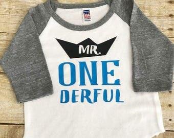 First Birthday Mr Onederful Outfit 1st Birthday Baby Boy