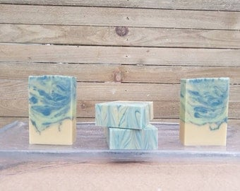 Forest Fern - Cold Process Castile Soap - Packed with natural cocoa butter and a crisp, woodsy scent