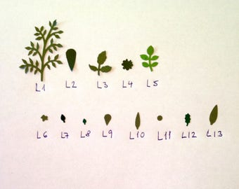 L4 dollshouse paper leaves for making miniature flowers and plants