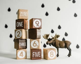 Number Blocks • Math Counting Blocks • Stacking Blocks • Organic Building Blocks • Natural Number Blocks • Wooden Blocks • Early Learning