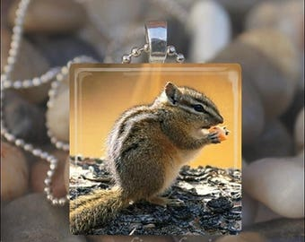 10% OFF JUNE SALE : Chipmunk Cutie Squirrel Nut Autumn Fall Glass Tile Pendant Necklace Keyring