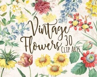 30 Digital Clip Arts. Collage Supplies. Scrapbooking Supplies. Digital Decoupage. Vintage Flowers.