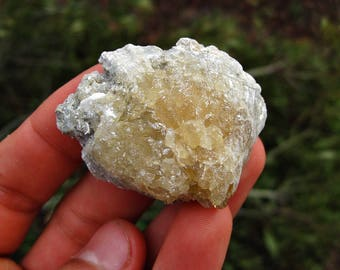 Calcite Crystal Filled Shell Impression