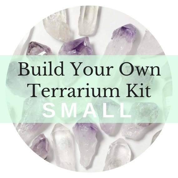 Small Custom Terrarium Kit || Build Your Own Air Plant + Crystal DIY Kit