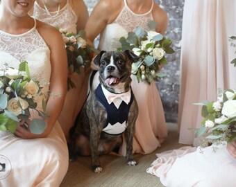 Dog suit | Etsy