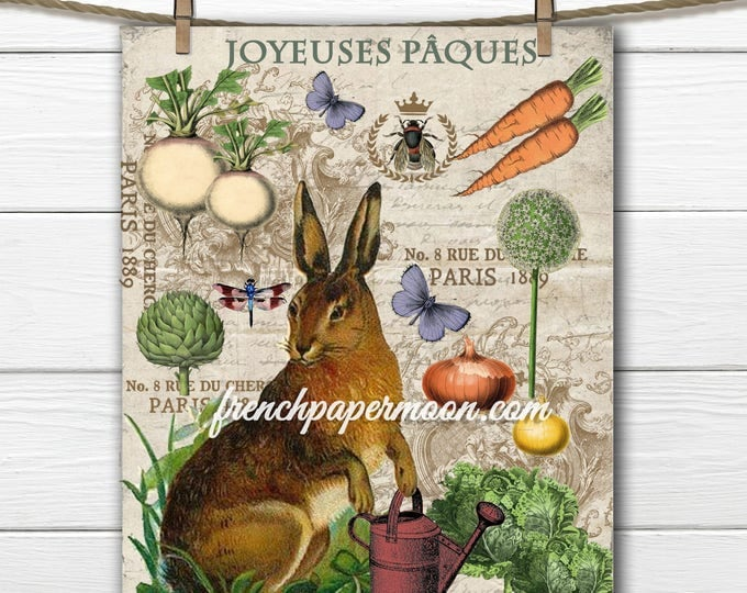 Digital French Easter Graphic Bunny Garden Vegetables  Easter Pillow Image Large Image Graphic Rabbit Transfer Download