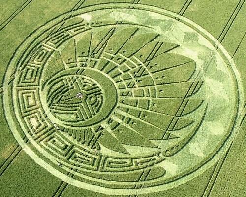Mayan Head Dress Crop Circle