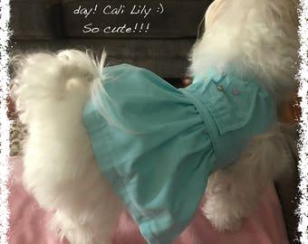 Aqua Dog Dress XS,S,M,L,XL Dog Clothes,Pet Apparel,Dogs Outfits,Wedding Dog Dress, Flower Girl Dog Dress, Party Dog Dress, Birthday Dog Girl
