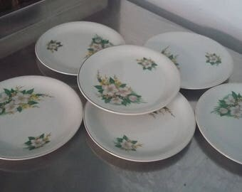 6 Retro Wood and Sons 'Alpine White' Tea Side Plates White Yellow Flowers