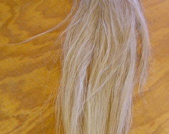 Flaxen/White Horse Tail