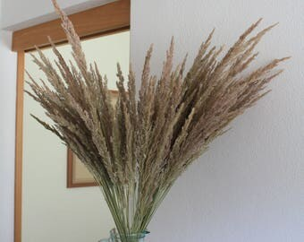 Bunch of dried grass , DIY supply