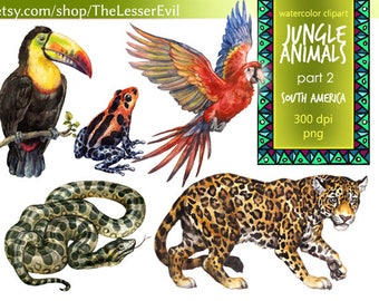 Jungle Animals Clipart, Digital Watercolor Tropical Animals of Amazon Clip Art, Hand-painted Realistic Stock Illustration, Commercial use