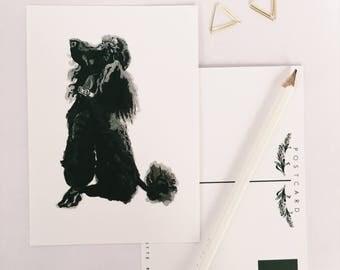 Poodle postcard - Dog greeting card - Dog stationary - Illustrated poodle