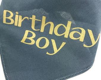 Birthday Dog Bandana Pet Collar Birthday Boy Dog Gray and Gold Celebrate Pet Birthday Party It's My Birthday Today
