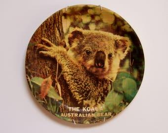 Australiana Australian koala wildlife plate
