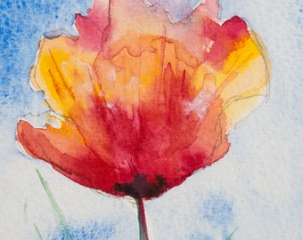 poppy flower water colour 2