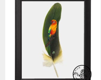 Sun conure painted on a feather
