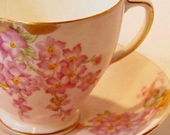 Old Royal China...Glorious Devon Teacup And Saucer Set... English Bone China... Old Royal Tea Cup Set,