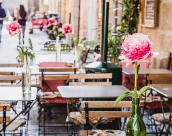 """France Travel Photography, """"Peonies at the Restaurant"""", Gallery Wall Art Prints, Home Decor"""