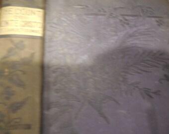 RARE Circa 1890 The Count Of Monte Cristo By Alexandre Dumas Revenge