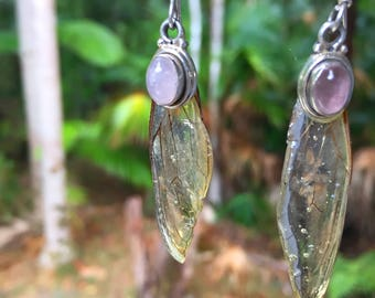 Cicada wings earrings handmade cast in resin with rose quartz and sterling silver from new zealand