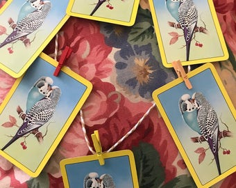 A string of vintage budgie bunting !