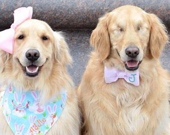 Spring Easter Bunny Dog Bandana || Happy Spring Bunnies Aqua Personalized Easter Pet Scarf || Personalized Puppy Gift by Three Spoiled Dogs