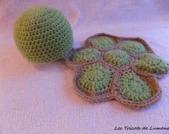 Turtle photo baby handmade costume