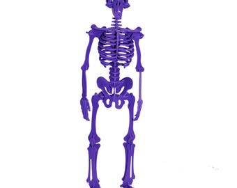 3D Puzzle, Dinosaur Toy, 3D Human Skeleton Puzzle, Recyclable PVC Homo Sapiens Puzzle Toy PURPLE, Eco-Friendly, Skeleton Toy, Human Body Toy