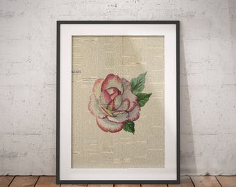 Single Rose Wall Art | Floral Rose Bouquet, Floral Bouquet Print, Spring Bouquet Rose, Floral Newspaper, Newspaper Wall Art, Rose Newspaper