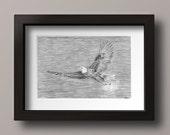 RESERVED FOR STEVE C - Eagle Drawing - Bald Eagle Art - Flying Eagle - Eagle Wall Art - Eagle Decor - Bald Eagle Decor - Original Drawing
