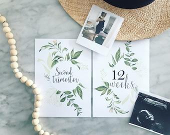 Printable Pregnancy Milestone Cards | Set of 58 | Wreath Greenery | Handpainted | Watercolor | Printable Cards | Pregnancy | Baby Keep Sake