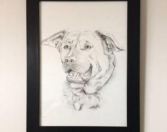 Custom Dog Portrait, Custom Pet drawing, Dog Lover Gift, Pet Lover Gift, Dog Pencil Drawing, Pet Loss Gift, Commissioned Pet Art